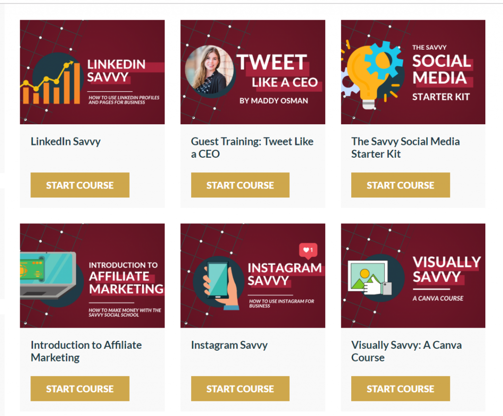 savvy social school courses